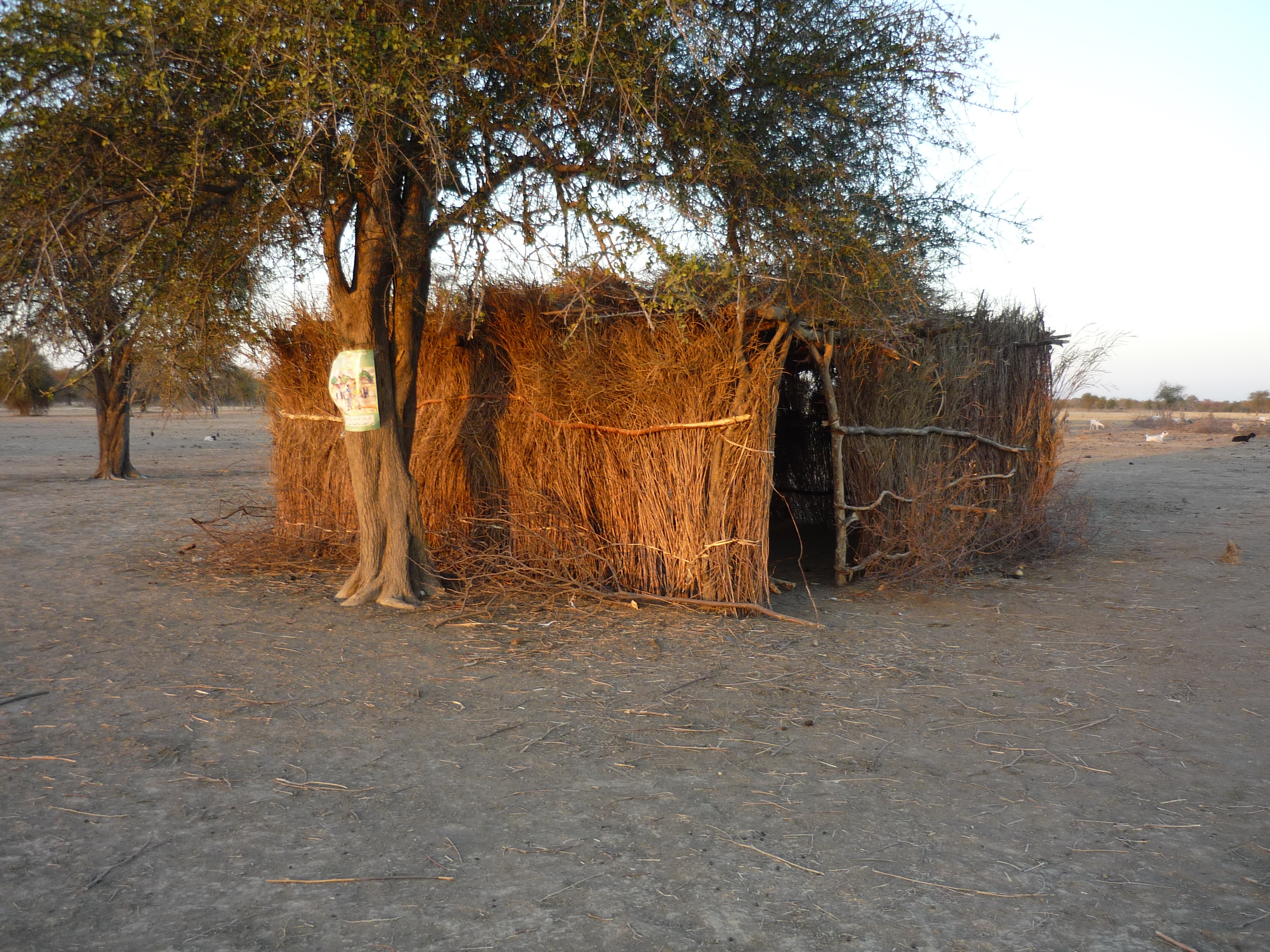 The first school building, permanent nomadic village, Central Chad